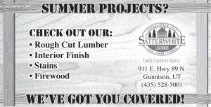 Advertisement design by Graphic Artist Dallas Price for Satterwhite Log Homes. Published in The Richfield Reaper 04/09/2014.