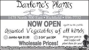 Advertisement design by Graphic Artist Dallas Price for Darlene's Plants. Published in The Richfield Reaper 05/16/2012.