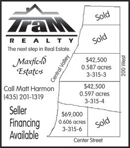 Advertisement design by Graphic Artist Dallas Price for Tram Realty. Published in The Richfield Reaper 07/18/2012.