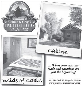 Advertisement design by Graphic Artist Dallas Price for Pine Creek Cabins. Published in The Richfield Reaper 09/12/2012.