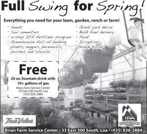 Advertisement design by Graphic Artist Dallas Price for Brian Farm Service. Published in The Richfield Reaper 04/23/2014.
