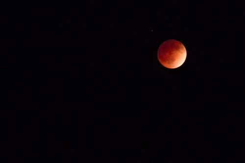 Photograph of the blood moon from April 15, 2014 in North America
